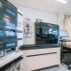 Dionex UltiMate 3000 RSLC nano Liquid Chromatography and Orbitrap Fusion Lumos Tribid Mass Spectrometer