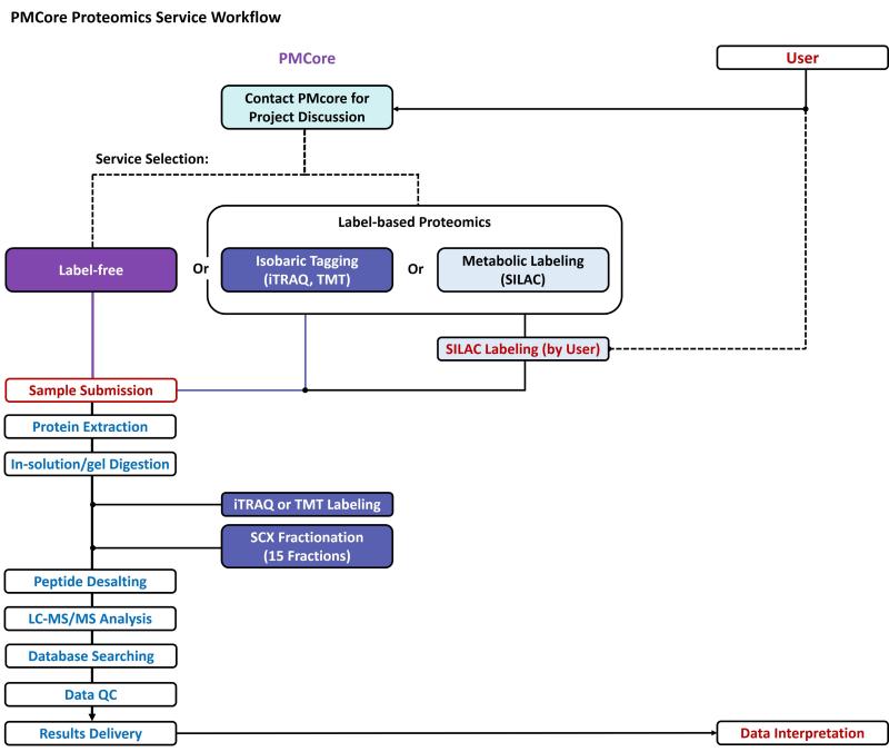 PMCore Proteomics Service Workflow